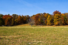 Virginia Autumn Farm Royalty Free Stock Image
