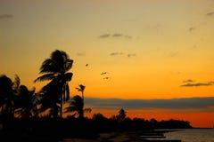 Virginia Beach Стоковое Изображение