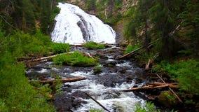 Virginia Cascade Yellowstone stock footage