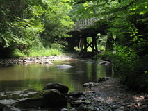 Virginia Creeper Trail Royaltyfria Bilder