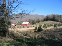 Virginia Creeper Trail Stock Image