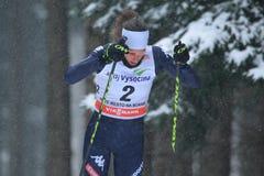 Virginia De Martin Topranin - esqui do corta-mato Imagem de Stock