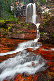 Virginia Falls at Glacier National Park. Beautiful Virginia Falls in the forests of Glacier National Park in northern Montana Stock Images