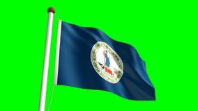 Virginia flag stock video
