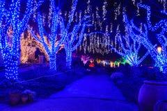Virginia Holiday Festival Walk av ljus royaltyfri foto