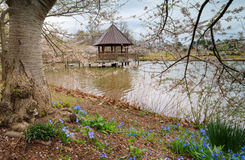 Virginia Meadowlark Gardens Spring Stock Images