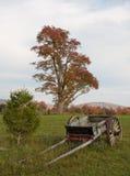 Virginia Occidentale del fogliame di caduta Fotografia Stock