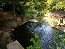 Virginia vattensjö Royaltyfri Bild