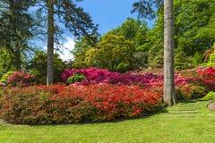 Virginia Water Park en Surrey, Reino Unido imagen de archivo libre de regalías