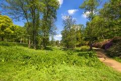 Virginia Water Park in Surrey, UK Royalty Free Stock Images