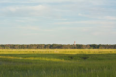 Virginia Wetlands et phare Photo stock