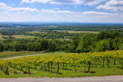 Virginia Wine Country. Landscape view of Virginia wine country from an eastern face of a hill in the Blue Ridge Mountains.  Northern Virginia's relative Stock Photo