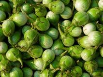 Virginianum de solanum, aubergine thaïlandaise photos stock