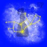 Virgo do zodíaco Ilustração Royalty Free