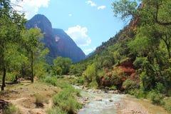 Virign flod, Zion National Park Royaltyfri Fotografi