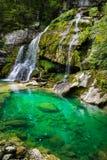 Virje vattenfall, Slovenien royaltyfri bild