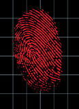 Virtual Fingerprint Identity. Fingerprint glows red on a grid background Stock Image