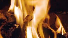 Virtual Fireplace Video stock footage
