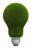 Virtual grass bulb Royalty Free Stock Photo