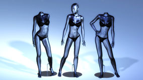 Virtual Manikins Stock Photography