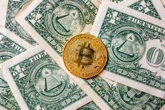 Virtual money golden bitcoin on one dollar bill background. Concept of new world order of cryptocurrency. Exchange bitcoin cash royalty free stock images