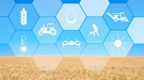Virtual screen with digital icons, blue sky and field background stock photography