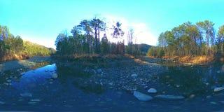 Virtuell verklighet för 360 VR av lösa berg, pinjeskogen och floden flödar Nationalpark-, äng- och solstrålar stock video