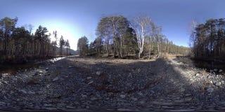 Virtuell verklighet för 360 VR av lösa berg, pinjeskogen och floden flödar Nationalpark-, äng- och solstrålar arkivfilmer