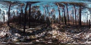 virtuelle Realität 4K 360 VR einer schönen Gebirgsszene zur Herbstzeit Wilde russische Berge im Schnee stock footage
