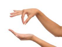 Virtuelle Visitenkarte des Frauenhandgriff-Zeichens Stockfotos