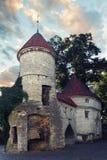 Viru brama, Tallinn, Estonia Stary miasteczko turystyczny miasto Tallinn fotografia royalty free
