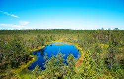 Viru Raba swamp lake. Viru Raba swamp lake in Estonia Royalty Free Stock Photos