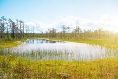 Viru Raba swamp lake. Viru Raba swamp lake in Estonia Royalty Free Stock Image