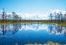 Viru Raba swamp lake. Viru Raba swamp lake in Estonia Royalty Free Stock Images