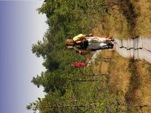 Viru Sumpf-Natur-Spur Stockfotos