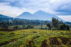 Virunga火山与绿色农田领域的国家公园风景 库存照片
