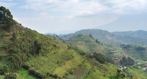 Virunga Mountains aerial view. Aerial view around the Virunga Mountains in Uganda (Africa Royalty Free Stock Photos