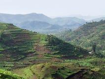Virunga Mountains aerial view. Aerial view around the Virunga Mountains in Uganda (Africa Royalty Free Stock Photo