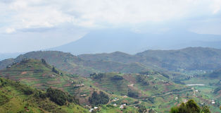 Virunga Mountains in Uganda. Aerial view around the Virunga Mountains in Uganda (Africa Stock Image