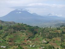 Virunga Mountains in Uganda Royalty Free Stock Image