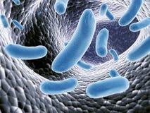 Virus. Colony of pathogen viruses - 3d render Stock Images