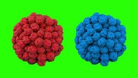 Virus angesteckter menschlicher Organismus Virus, Bakterien, nahes hohes der Mikrobe Grüne Gesamtlänge des Schirmes 4k lizenzfreie abbildung