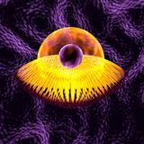 Virus bacteria. 3d medical illustration Royalty Free Stock Photo