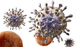 Virus. Bacteria.Viruses in infected organism , viral disease epidemic. 3d render Royalty Free Stock Photos