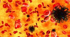 Virus bloodstream Stock Images