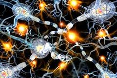 Virus che attaccano le cellule nervose Fotografie Stock Libere da Diritti