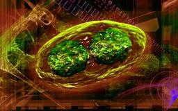 Virus de sífilis Fotografía de archivo