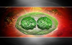 Virus de sífilis Imagen de archivo libre de regalías