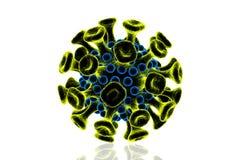 Virus del VIH Imagen de archivo libre de regalías