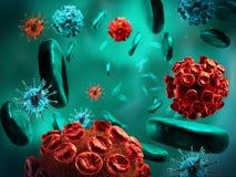Virus et globules sanguins Images libres de droits